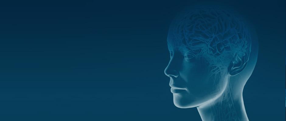 Postgraduate Diploma in Leadership – Human Factors & Neuroscience